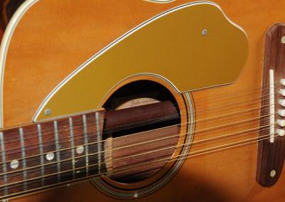 Fender Villager 1969 (11)