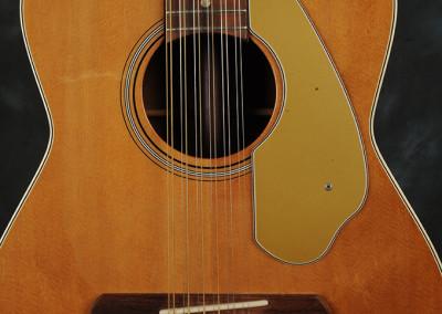 Fender Villager 1969 (3)