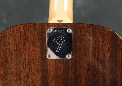 Fender Villager 1969 (5)