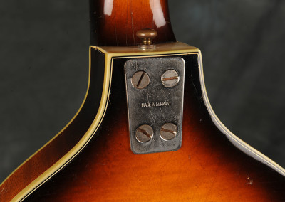 Klira Bass (6)