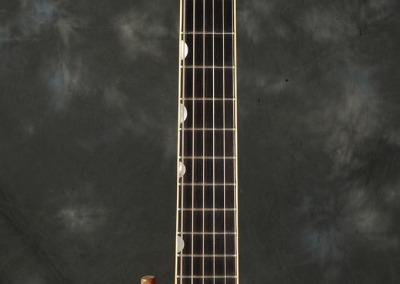 Gretsch 1959 6120 b (4)