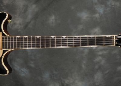 Gretsch 1964 6131 (6)