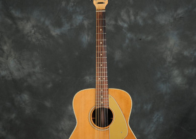 Fender Villager 1969 (1)