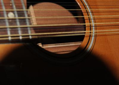 Fender Villager 1969 (12)
